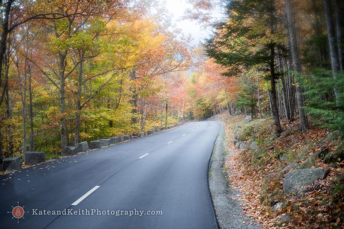 fall Cadillac Mountain wedding ceremony Acadia National Park